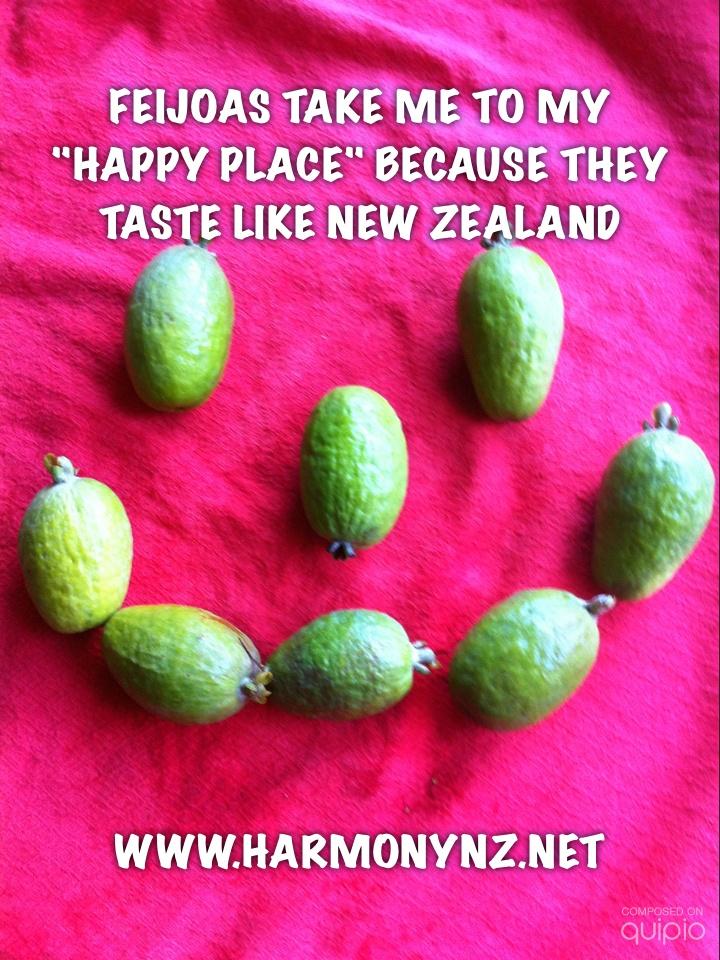 Taste New Zealand. Feijoa=Pineapple Guava