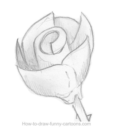 How to sketch a rose, part 9