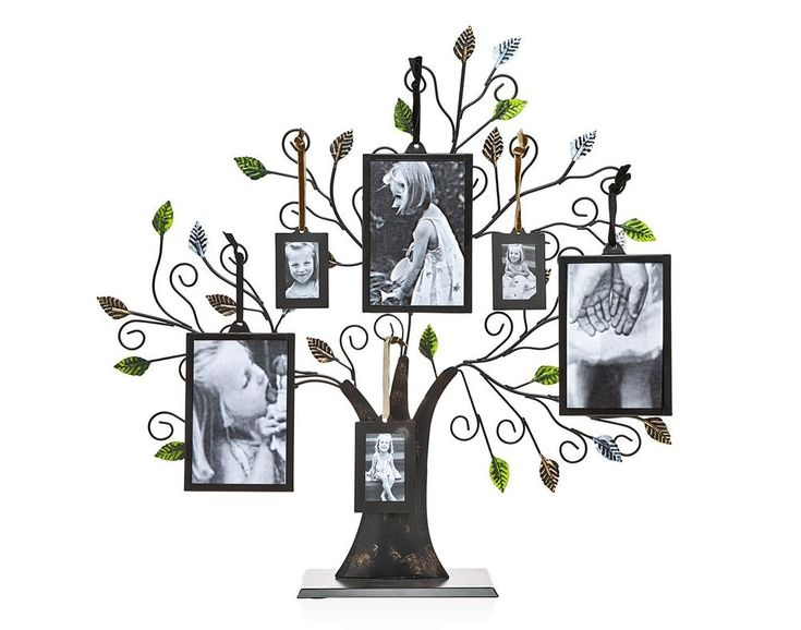 Photo Picture Frames Display Stand Family Tree of Life Green Leaves 6 Hanging #HomeDecor