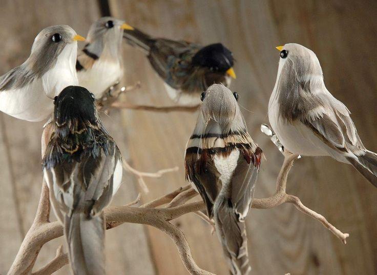 Assorted 5in Artificial Birds 6pc So Cute Love All