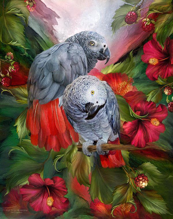 329 Best Tableaux Images On Pinterest Drawings Birds