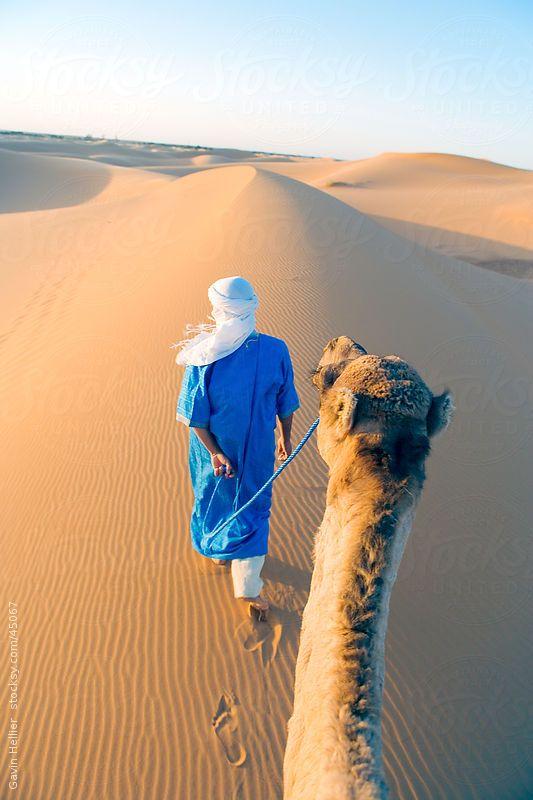 Berber man walking with his camel, Erg Chebbi, Sahara Desert, Merzouga, Morocco, North Africa, Africa by Gavin Hellier