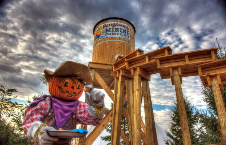 Bengtson Farms Homer Glen | Pumpkin Farm Illinois | Unlimited Kiddie Rides 60491 - Bengtson's Pumpkin Fest