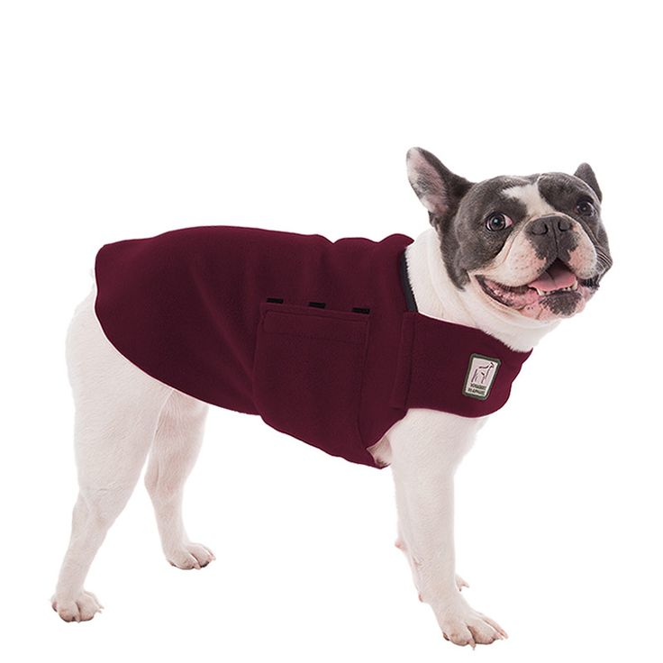 Burgundy Maroon French Bulldog Dog Tummy Warmer, great for warmth, anxiety and laying with our dog rain coat. High performance material. Made in the USA.