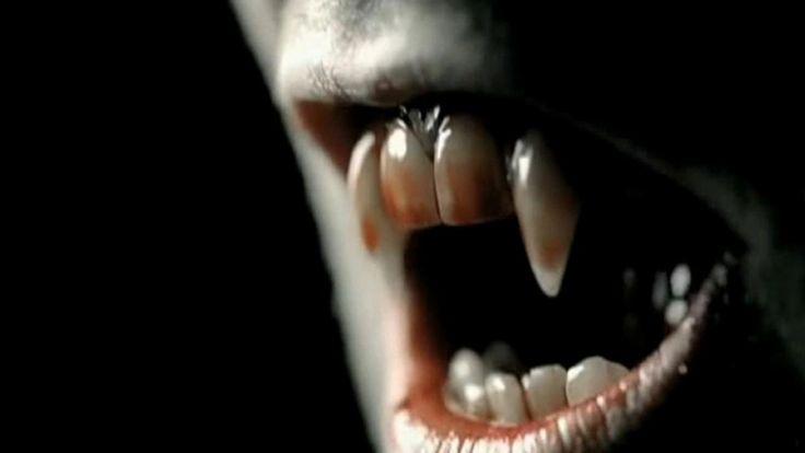 73 best vampire fangs images on pinterest vampire art