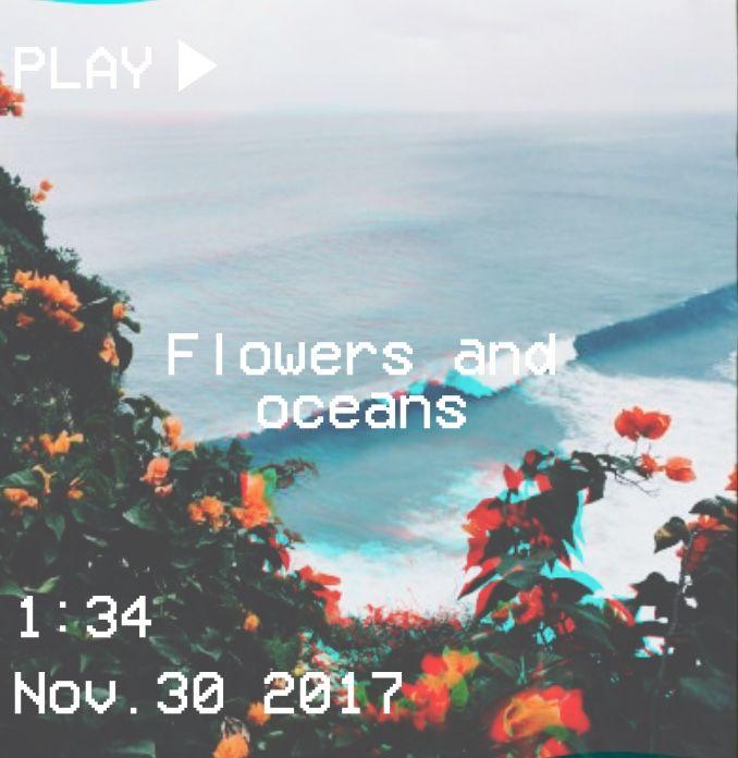 Fall Flowers Wallpaper Backgrounds M O O N V E I N S 1 0 1 Vhs Flowers Ocean Aesthetic