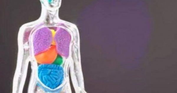 9 συμπτώματα που δείχνουν ότι έχετε άμεση ανάγκη από αποτοξίνωση!!  #Υγεία