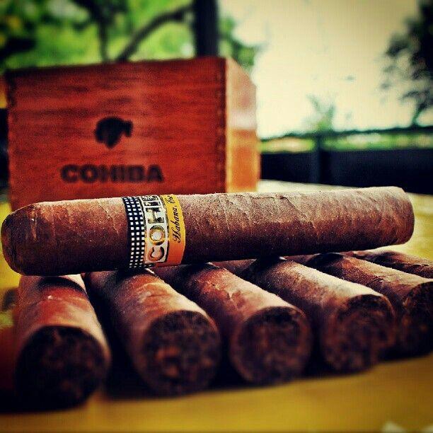 #cigars #coiba