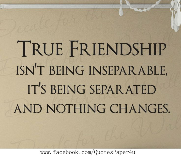 True friendship | #Quotes About Life
