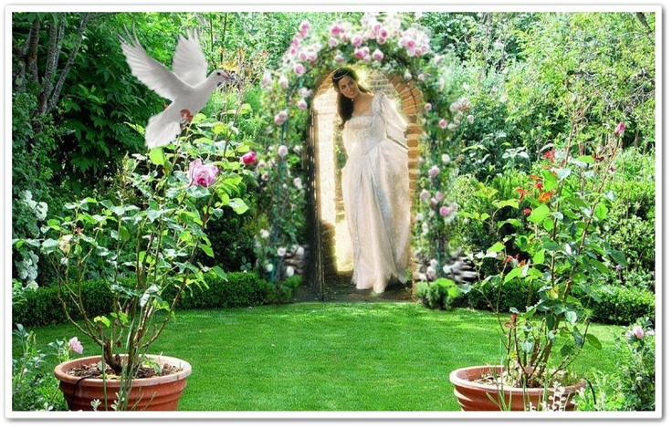 1000 Images About Creation By Silvia 2 On Pinterest The Secret Garden Holy Spirit And