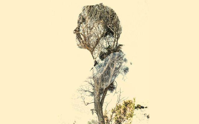 Spirit of Nature 8 by Gianluca Scolaro