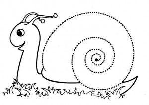snail trace worksheet