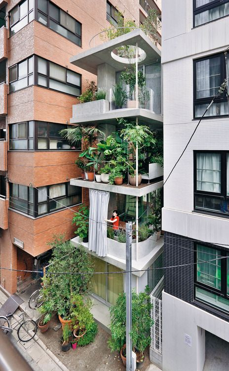 Ryue Nishizawa - Vertical garden house, Tokyo 2013. Via, photos (C) Iwan Baan.