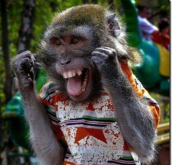 радость смешная картинка наличии нашем