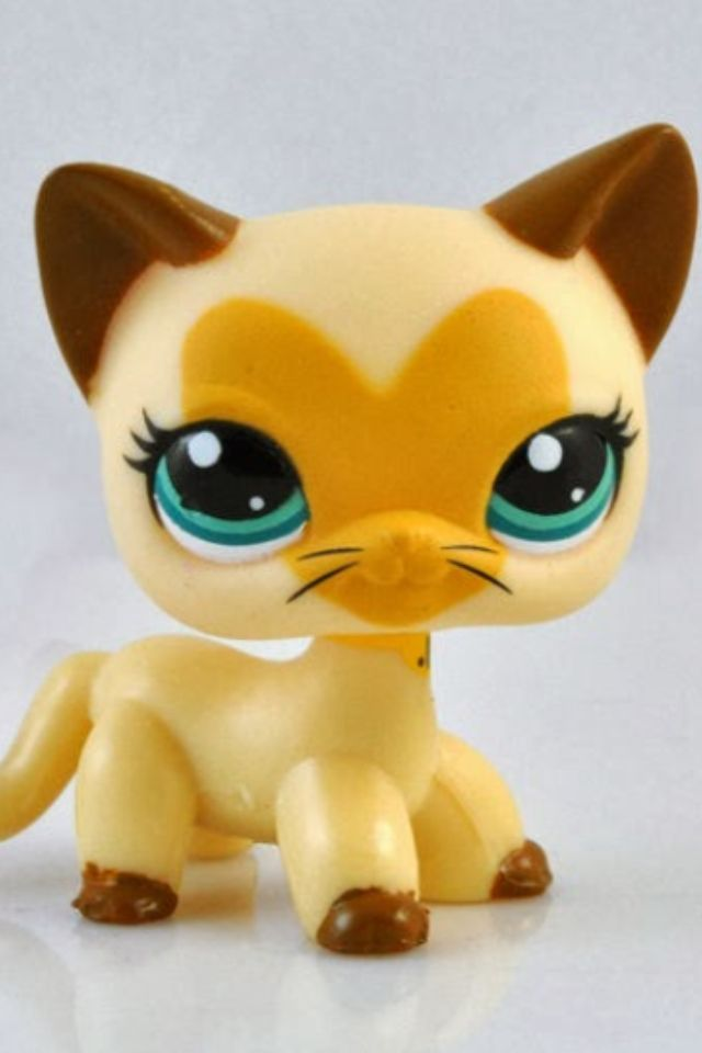 17 Best Images About Lps Short Haired Cats On Pinterest