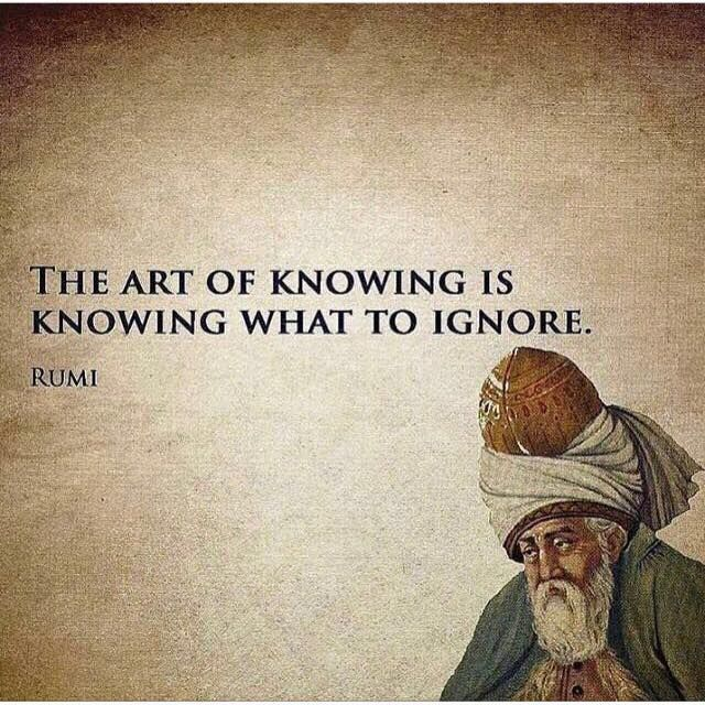 The art of knowing is knowing what to ignore. -Rumi