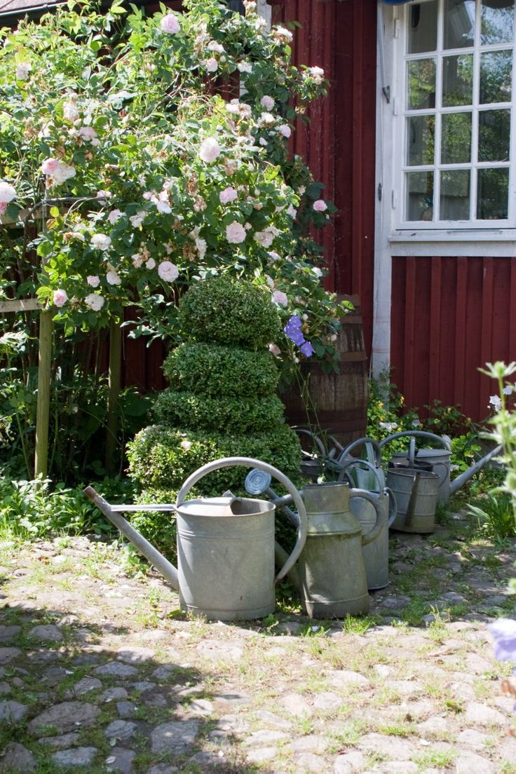 711 best watering cans images on pinterest watering cans garden