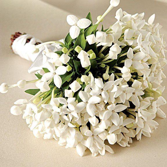 Esto solo o combinado con peonias y/o con hortensias seria muy bonito