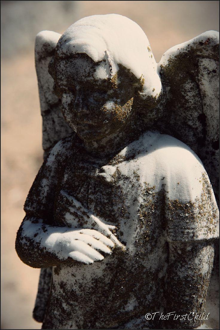 Cemetery   Franschhoek   Copyright of ©TheFirstChild Photograph