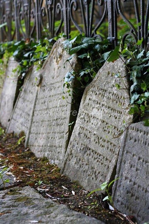 Jewish Cementery in Trebic, The Czech Republic