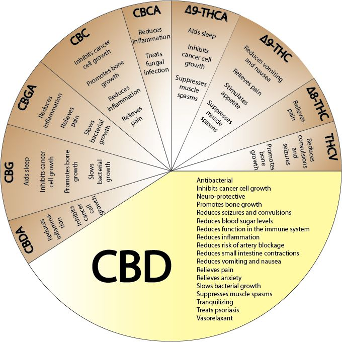 CBD miracle cure..Cannabis, Hemp, Cbd, Benefits Of, 50 States, Health Benefits, Be Healthy, Pies Charts, Mary Jane