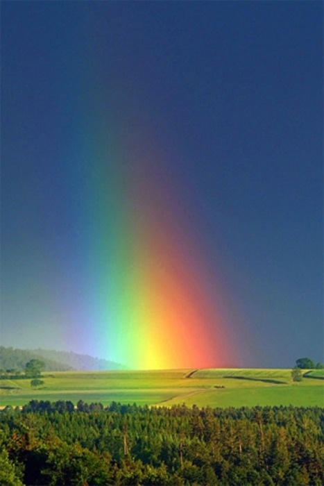Wow!: Rainbows In Natural, God Promise, Colors, Beautiful Rainbows, Cloud, Sunny Day, Pots Of Gold, Heavens, Fields