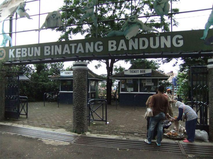 Bandung, Kebun Binatang Bandung: Wisata Keluarga di Kota Bandung