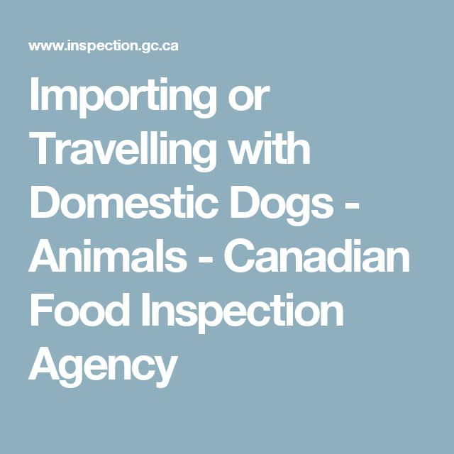Importing or Travelling with Domestic Dogs - Animals - Canadian Food Inspection Agency