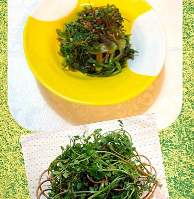 今の時期だけの田ゼリを使ってます。 春の味です ^ ^ - 8件のもぐもぐ - セリのナムル 미나리 나물 by ykoko