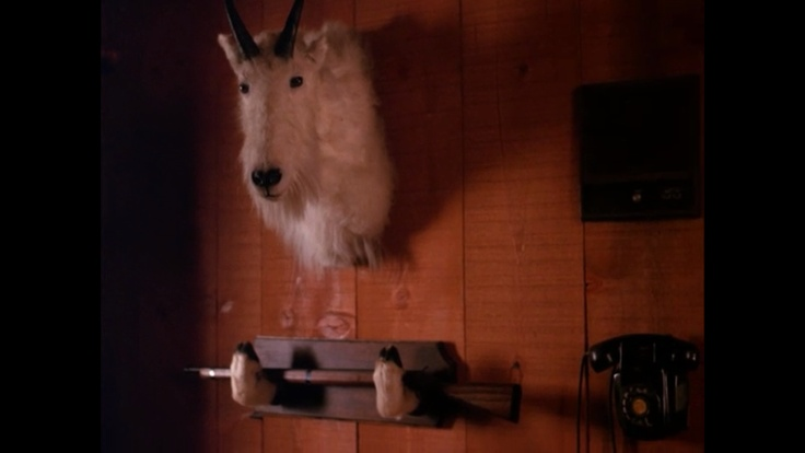 I can live in Twin Peaks if I want to.