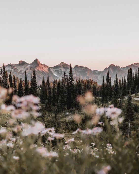 Ich natur ich berge ich reise ich wandere ich sonnenuntergang ich wald ich kiefern ich sommer ich erforsche ich erforsche ich abenteuer ich klettere ich wandere ich