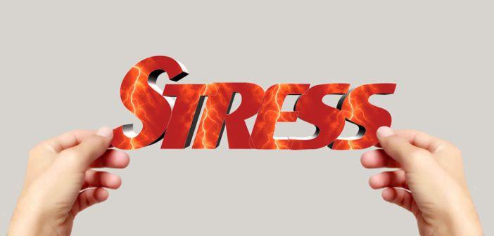 Jak může emoční napětí způsobovat rakovinu a jak se tomu vyhnout. Jistě všichni znáte pana Duška a pana Hnízdila a jejich příběhy o tom, že za všemi nemocemi stojí určitý stres. Rozhodli jsme se tomu přijít na zoubek a malinko Vám přiblížit jak je to možné a jak se tomu vyhnout.