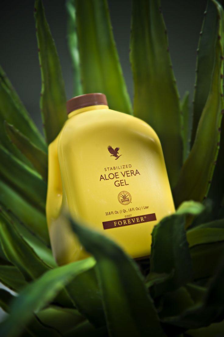 how to make aloe vera gel for primer