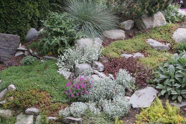 89 Best Dry River Bed Ideas Xeroscaping Images On Pinterest - dry garden design brooke