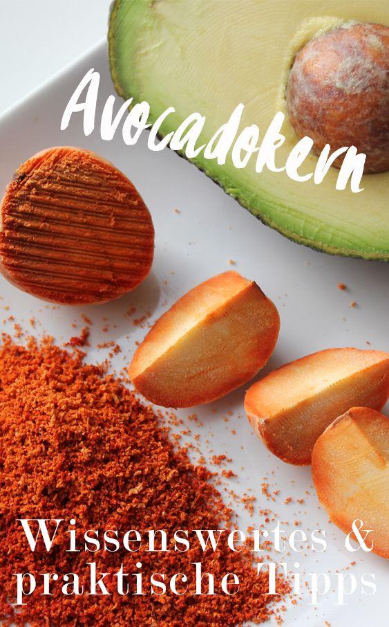 Was Sie über den Avocado-Kern wissen sollten: Fakten, Wirkung und Praxistipp …   – Rezepte
