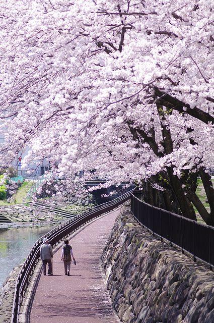 Oita, Japan