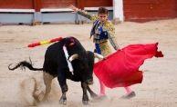 İspanya'nın Balear Adaları'nda boğa öldürmek yasaklandı
