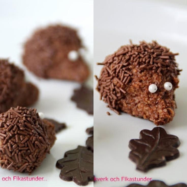 Chokladbollsigelkott