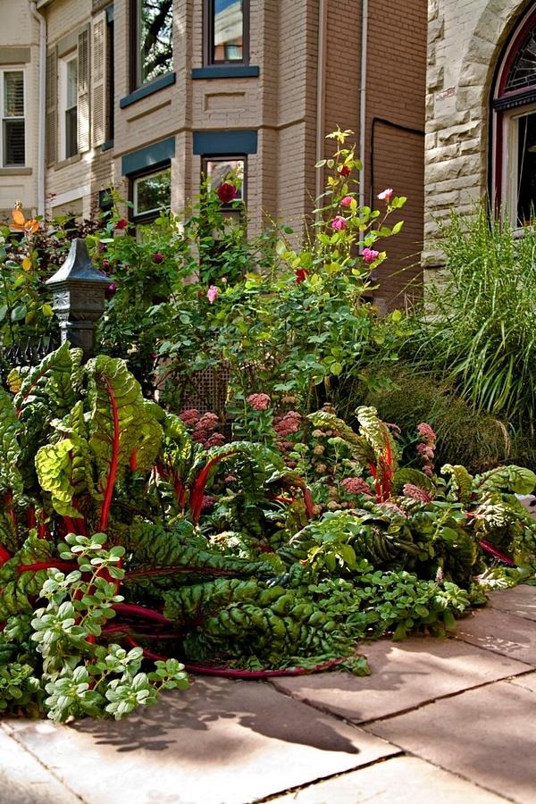 Best Landscape Design Edible Landscaping Ideas Images On - Urban front yard landscaping ideas