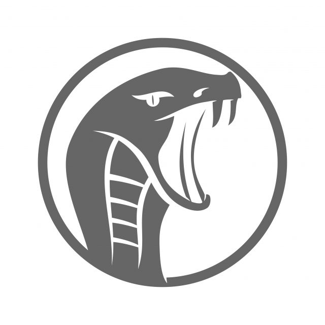 Snake Cobra Head Logo Template Vector Illustration Isolated Immagini