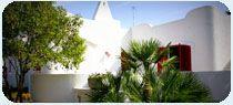 CASE VACANZE SALENTO GALLIPOLI  VILLA LILIA   aratteristica villa in stile mediterraneo circondata da un rigoglioso giardino di oltre 2000mq, garantisce vacanze in tranquillità e assoluto relax. la struttura si compone di 5 camere, un'ampia living room con zona cottura ed ennessa sala TV con divano letto.  per info tel. 0833/908833  #holidayingallipoli #casevacanzegallipoli #casevacanzesalento #appartamentigallipoli #appartamentisalento #salento #puglia