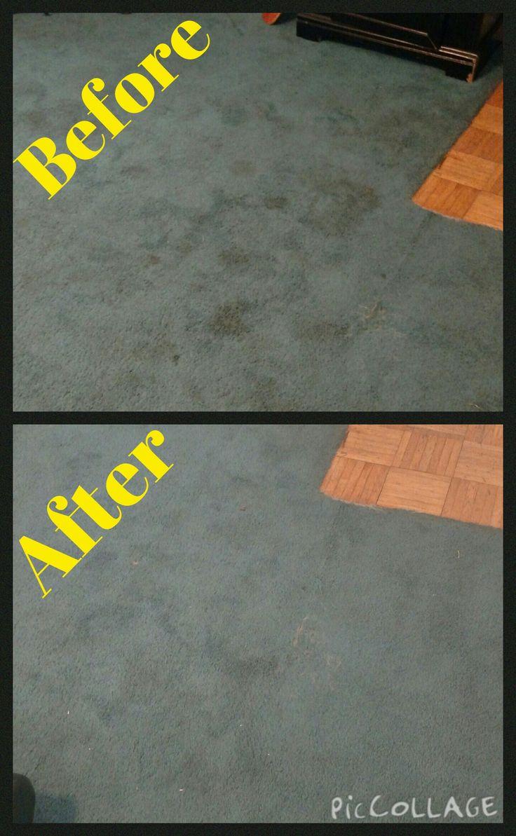 DIY All Natural Carpet Cleaner ⋆ - http://www.creativehobbyist.com/naturalcarpetcleaner/
