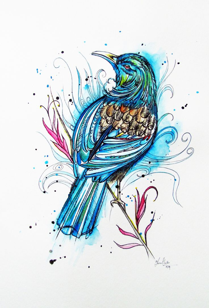 Watercolour Tui....tattoo?