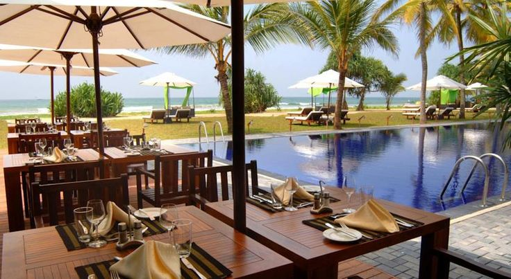 """The Surf Hotel. Шри-Ланка, Бентота  The Surf #Hotel ⭐⭐⭐⭐ К услугам гостей современные номера с прекрасным видом на море и открытый бассейн. Ресторан отеля предлагает выбор блюд интернациональной кухни, а также ежедневный завтрак """"шведский стол""""."""