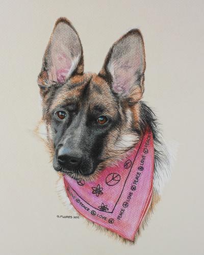 """""""Mattie"""" was drawn for a friend:  German Police Dogs,  German Shepherd Dogs"""