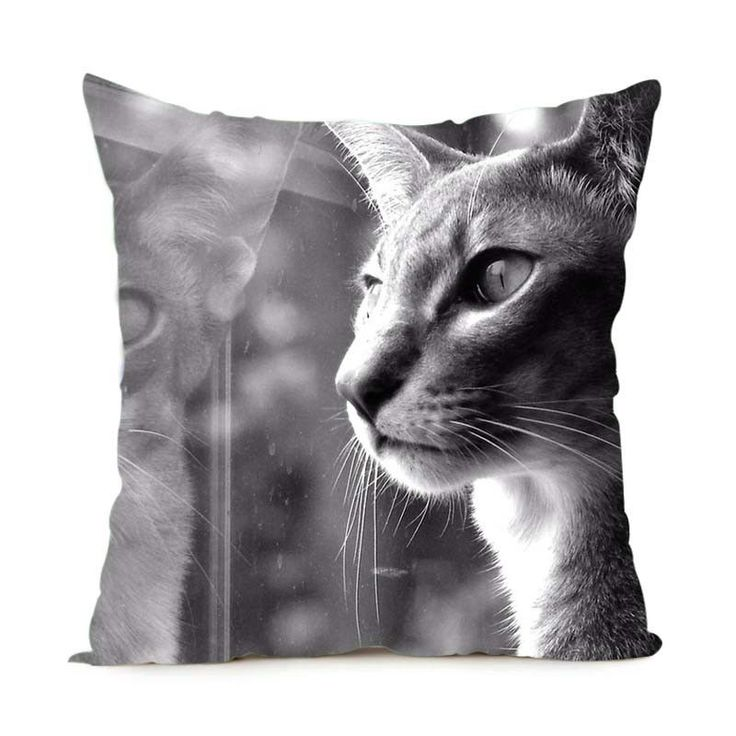 Maine Coon Cat Pillowcases