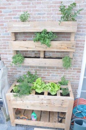 Klein groentetuintje met kruidenrijke erboven!! Leuk voor in de kleine tuin