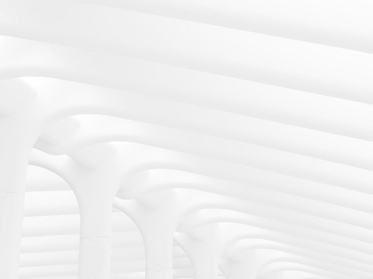 In New York, Benedict Redgrove documents the Oculus structure, the World Trade Centre's new transport hub designed by architect Santiago Calatrava. Comprised of steel ribs and glass arrayed in a large elliptical shape, the all-white skeletal-like structure creates two canopies over thesite, providing a moment of quiet and calm as people movebetweenthe train station, to theirs offices and shopping malls.