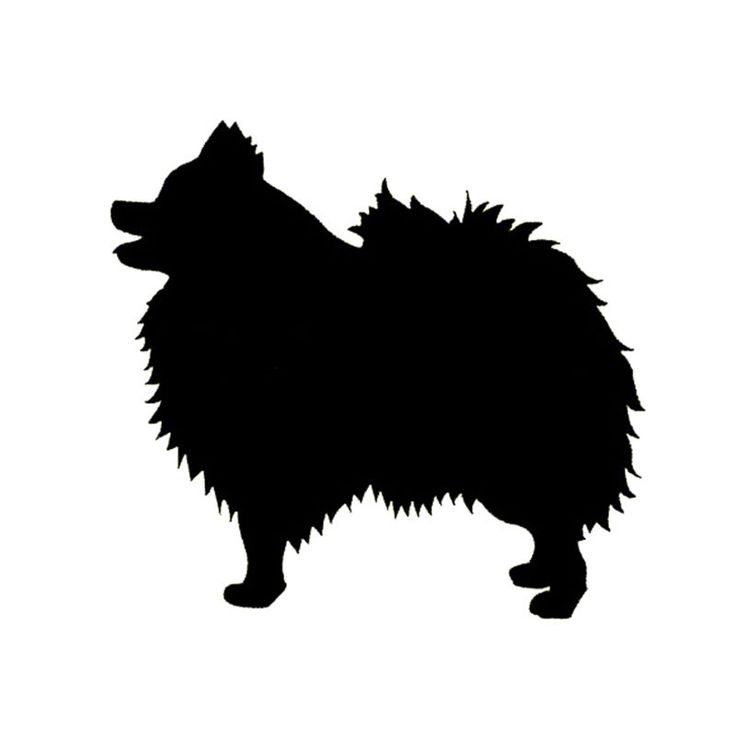 Wholesale 5pcs,10pcs,14*13CM Pomeranian Dog Bumper Sticker Species Animals Pets Dogs Motorcycle Car Stickers And Decals