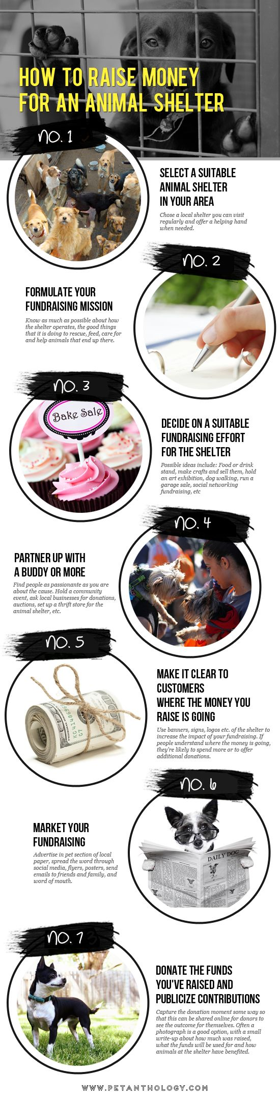 How To Raise Money for An Animal Shelter http://petanthology.com/infographic-how-to-raise-money-for-an-animal-shelter-or-rescue/ #pet #infographics #animalshelter #fundraising